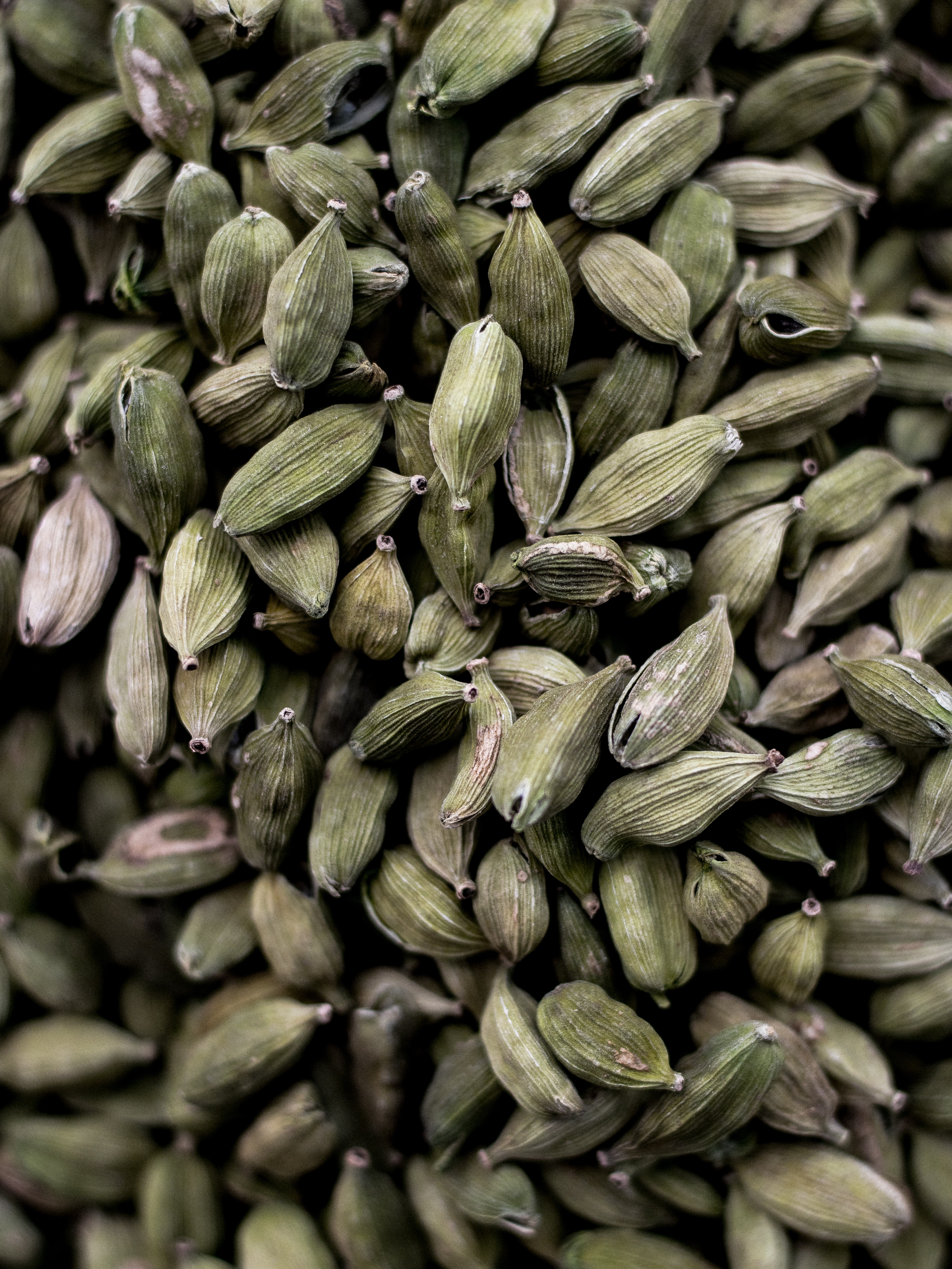 Anis - aromatisch & wirkungsvoll
