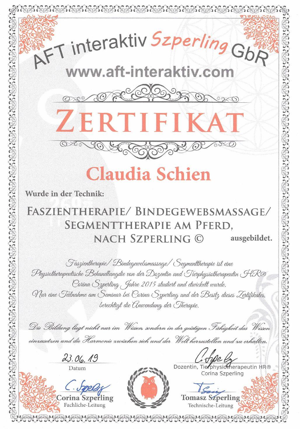 Faszientherapie / Bindegewebsmassage nach Szperling©