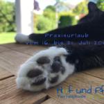 Praxisurlaub vom 16. bis 21. Juli 2019