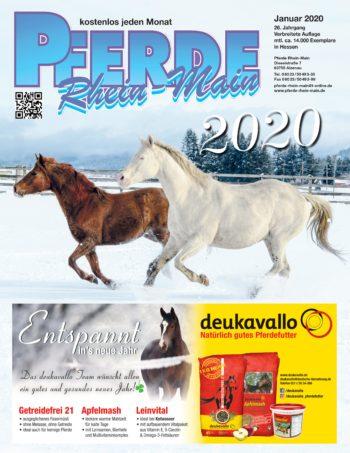 Arthrose - wenn Bewegung schwer fällt - Pferde Rhein-Main